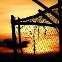 Escape the Roth 401(k) Trap